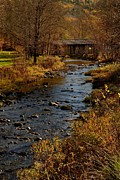 Fall Trees With Stream. Art - Covered Bridge by Don Dennis