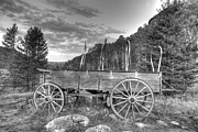 Conestoga Wagon Photos - Covered Wagon by Tim Roncaglione