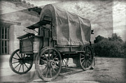 Claudio Bacinello - Covered Wagon Wet Plate