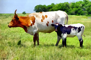 Cow Digital Art - Cow and Calf  by Ann Powell