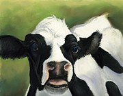 Charlotte Yealey - Cow Closeup