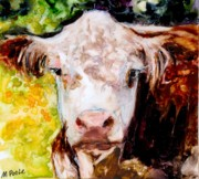 Hereford Prints - Cow Face Print by Molly Poole