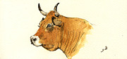 Nature Study Paintings - Cow head study by Juan  Bosco