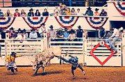 Rodeo Bulls Posters - Cowboy Up Poster by Charles Dobbs