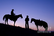 John Shaw - Cowboys In Silhouette