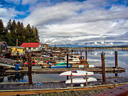Cowichan Bay Vancouver Island Print by Lynn Bolt