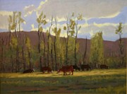 Rural Landscapes Pastels - Cowlight by Doyle Shaw