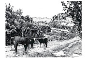 Pointillist Originals - Cows in the Canyon by Joseph Juvenal