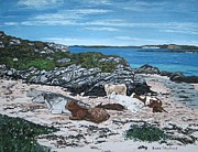 Shephard Prints - Cows on the Beach Print by Diana Shephard