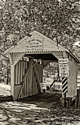 Gold Trees Framed Prints - Cox Farm Bridge monochrome Framed Print by Steve Harrington