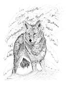 Carl Genovese - Coyote