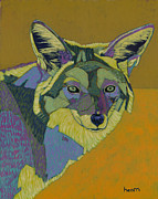 Southwest Originals - Coyote Gold by David  Hearn