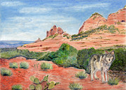 Sedona Pastels Prints - Coyote In Sedona Print by Barb Kirpluk