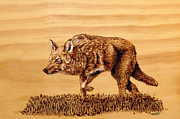  Hunter Pyrography - Coyote by Ron Haist
