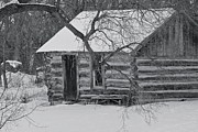Old Cabins Framed Prints - Cozy Hideaway BW Framed Print by Penny Meyers