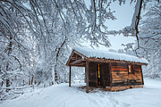 Cabin Framed Prints - Cozy Place Framed Print by Evgeni Dinev