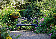 The Garden Bench Prints - Cozy Southern Garden Bench Print by Carol Groenen