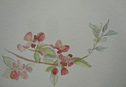 Pink Flower Branch Paintings - Crab Apple Blossom by Tonya Henderson Rollyson