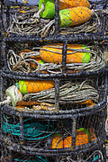 Rope Framed Prints - Crab cages Framed Print by Garry Gay