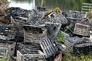 Crab Traps Photos - Crab Traps by Theresa Willingham