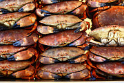 Angry Face Framed Prints - Crabs await their fate Framed Print by James Brunker