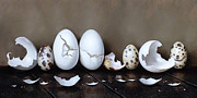 Quail Paintings - Cracked Eggs IV by Clinton Hobart