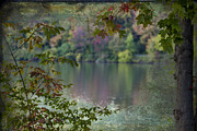 Brown Toned Art Prints - Crackled Autumn Newport Lake Vista Print by Janice Rae Pariza