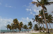 Theresa Willingham - Crandon Park Beach