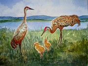 Cranes Originals - Crane Family by Marilyn  Clement