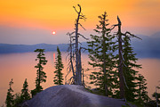 Peaceful Scenery Posters - Crater Lake Trees Poster by Inge Johnsson