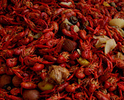 Crawfish Boil Framed Prints - Crawfish  Framed Print by Daniel Schubarth