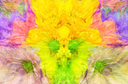 Crazy Mixed Media Prints - Crazy Daises - Spring Flowers - Bouquet - Wind Blown - Abstract 1 Print by Andee Photography