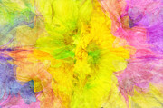 Fun Mixed Media Prints - Crazy Daises - Spring Flowers - Bouquet - Wind Blown - Abstract 2 Print by Andee Photography