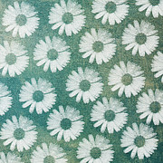 All - Crazy Daisy Square by Andee Photography