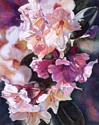 Colored Flowers Painting Posters - Creamy Rhododendron Poster by Sharon Freeman
