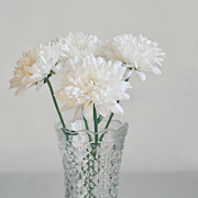 Interior Still Life Metal Prints - Creamy white flowers in tall vase Metal Print by Lyn Randle