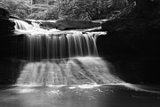 Amanda Kiplinger - Creation Falls in Black...