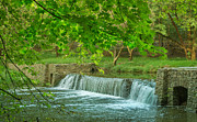 A Summer Evening Landscape Photo Prints - creek at Valley Forge Print by Rima Biswas