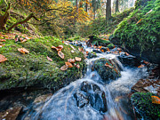 Herbstlaub Photos - Creek in Autumn - Silberbachtal no16 by Martin Liebermann