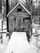 Cabin Metal Prints - Creepy Cabin in the Woods Metal Print by Edward Fielding