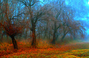 Eerie Paintings - Creepy colorful forest on foggy autumn day by Sasa Prudkov