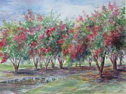 Gloria Turner - Crepe Myrtle After the...