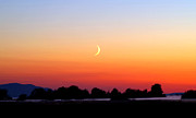 Crescent Moon At Sunset  - Lummi Bay Print by Douglas Taylor