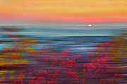 Abstract Blueberries Framed Prints - Crimson Dawn - a Tranquil Moments Landscape Framed Print by Dan Carmichael