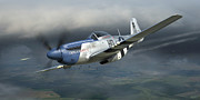 P-51 Mustang Prints - Cripes AMighty 3rd Print by Robert Perry