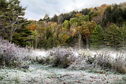 Lakes Digital Art - Crisp Morning Frost Hillside Landscape by Christina Rollo