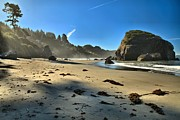 Pacific Coast Beaches Framed Prints - Crisp Pacific Morning Framed Print by Adam Jewell