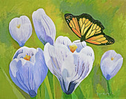 Susan McNally - Crocus and Monarch...
