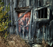 Primitive Decor Posters - Crooked Barn - Rustic Barns Series  Poster by Thomas Schoeller