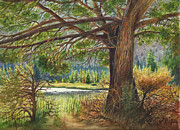 Arthur Fix Metal Prints - Crooked River Shade Metal Print by Arthur Fix